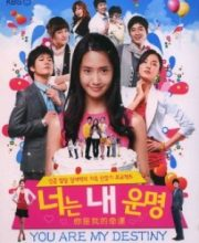 Watch Drama You Are My Destiny Eng Sub