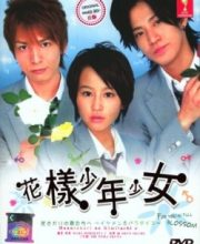 Watch Drama Hanazakari no Kimitachi e Eng Sub