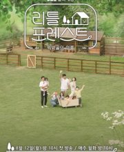 Watch Drama Little Forest 2019 Eng Sub