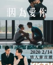 Watch Drama Because of You (TW 2020) Eng Sub