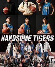 Watch Drama Handsome Tigers Eng Sub