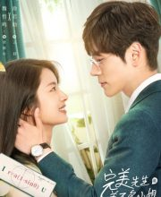 Watch Drama Perfect and Casual (2020) Eng Sub