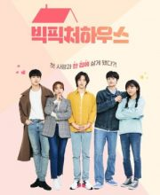 Watch Drama Big Picture House Eng Sub