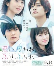 Watch Drama Love Me, Love Me Not Eng Sub