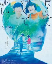 Watch Drama Blue, Painful, and Brittle Eng Sub
