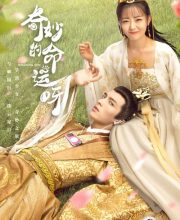 Watch Drama Wonderful Fate (2021) Eng Sub