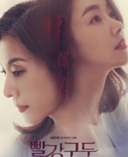 Watch Drama Red Shoes (2021) Eng Sub