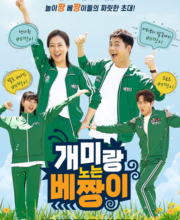 Watch Drama The Ant and the Grasshopper (2021) Eng Sub